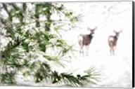 Winter's Dream Fine-Art Print