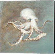 Treasures from the Sea V Fine-Art Print