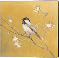 Black Capped Chickadee on Gold Fine-Art Print