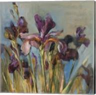 Spring Iris I Fine-Art Print