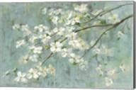 Dogwood in Spring on Blue Fine-Art Print