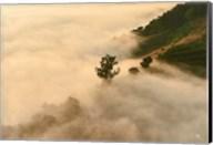 Clouds Fine-Art Print