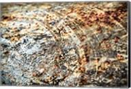 Retro Rust Fine-Art Print
