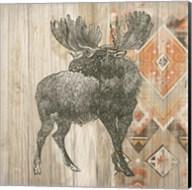 Natural History Lodge Southwest VIII Fine-Art Print