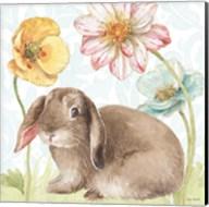 Spring Softies Bunnies III Fine-Art Print