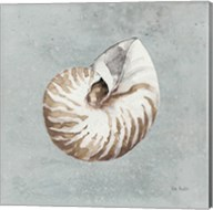 Sand and Seashells I Fine-Art Print