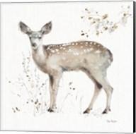 A Woodland Walk IX Fine-Art Print