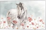 Wild Horses I Fine-Art Print