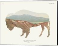 American Southwest Buffalo Fine-Art Print