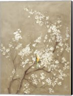 White Cherry Blossom I Neutral Crop Bird Fine-Art Print