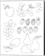 Line Art Fruits Fine-Art Print