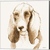 Oberon Brown and Orange Fine-Art Print
