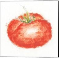 Garden Delight XII Fine-Art Print