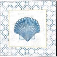 Navy Scallop Shell on Newsprint with Gold Fine-Art Print