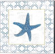 Navy Starfish on Newsprint with Gold Fine-Art Print