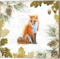 Into the Woods IV Fine-Art Print