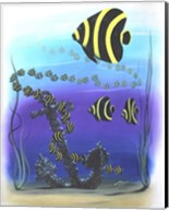 Angelfish Fine-Art Print