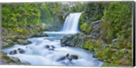 Tawhai Falls, New Zealand Fine-Art Print