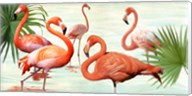 Flamingos Fine-Art Print