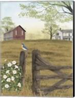 Morning's Glory Fine-Art Print