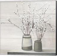 Pussy Willow Still Life Gray Pots Shiplap Fine-Art Print