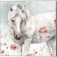Wild Horses V Fine-Art Print