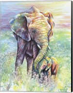 Mother & Baby Elephant Rainbow Colors Fine-Art Print