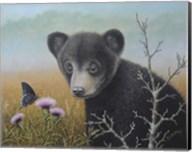 Curious Cub Fine-Art Print