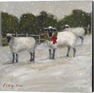 Sheep in Snow Fine-Art Print