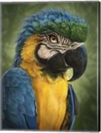 Parrot Totem Fine-Art Print