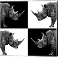 Safari Profile Collection - Rhinos II Fine-Art Print