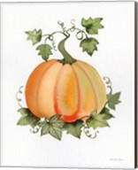 Pumpkin and Vines II Fine-Art Print