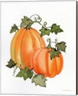 Pumpkin and Vines I Fine-Art Print