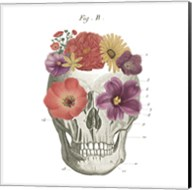 Floral Skull II Fine-Art Print