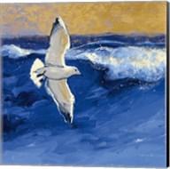 Seagulls with Gold Sky II Fine-Art Print