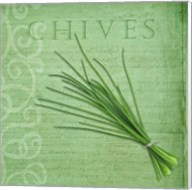 Classic Herbs Chives Fine-Art Print