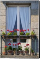 Window With Red Geraniums Fine-Art Print