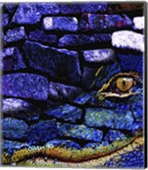 Cayman Rocks Fine-Art Print