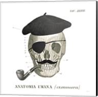 Dandy Bones VI Fine-Art Print