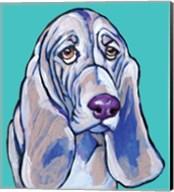 Hound II Fine-Art Print