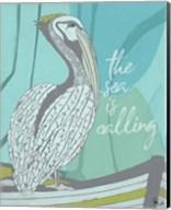 Pelican - Sea is Calling Fine-Art Print