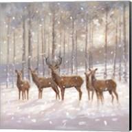 Snow Family Fine-Art Print