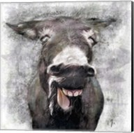 Donkey Fine-Art Print