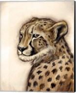 Cheetah Portrait Fine-Art Print