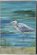Great Blue - Heron - 1 Fine-Art Print