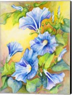 A Morning Glory Vine Fine-Art Print