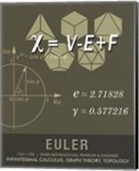 Euler Fine-Art Print