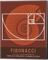 Fibonacci Fine-Art Print