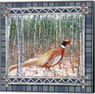 Birch Frame Plaid-Pheasant Fine-Art Print