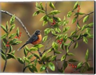 Robin with Holly Fine-Art Print